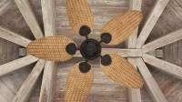 Update Your Ceiling Fan with These Trendy Options - Zakhar ...