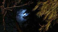 a Lua em destaque, recortada