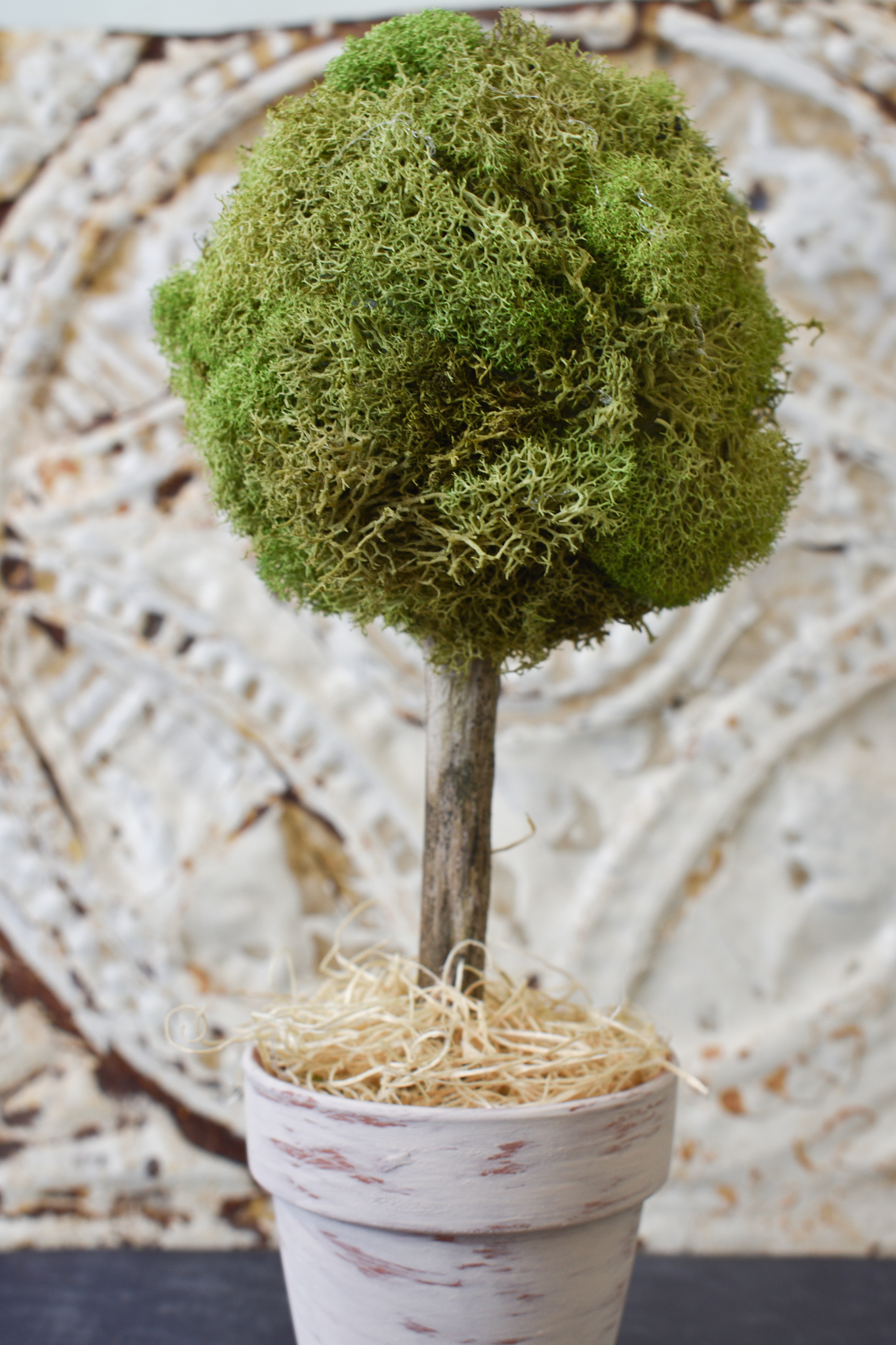 close up of finished diy moss topiary trees project