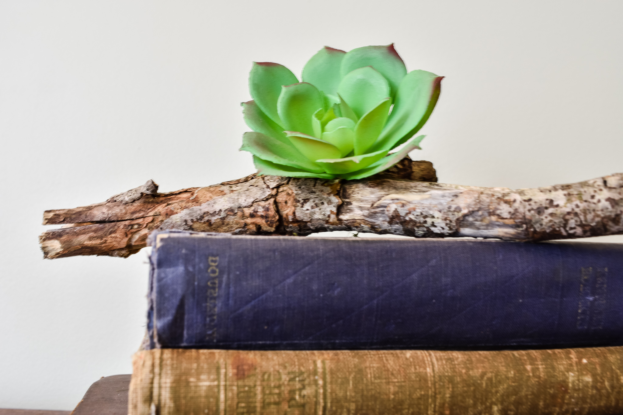 faux succulent glued to a twig and styled on top of a stack of old books