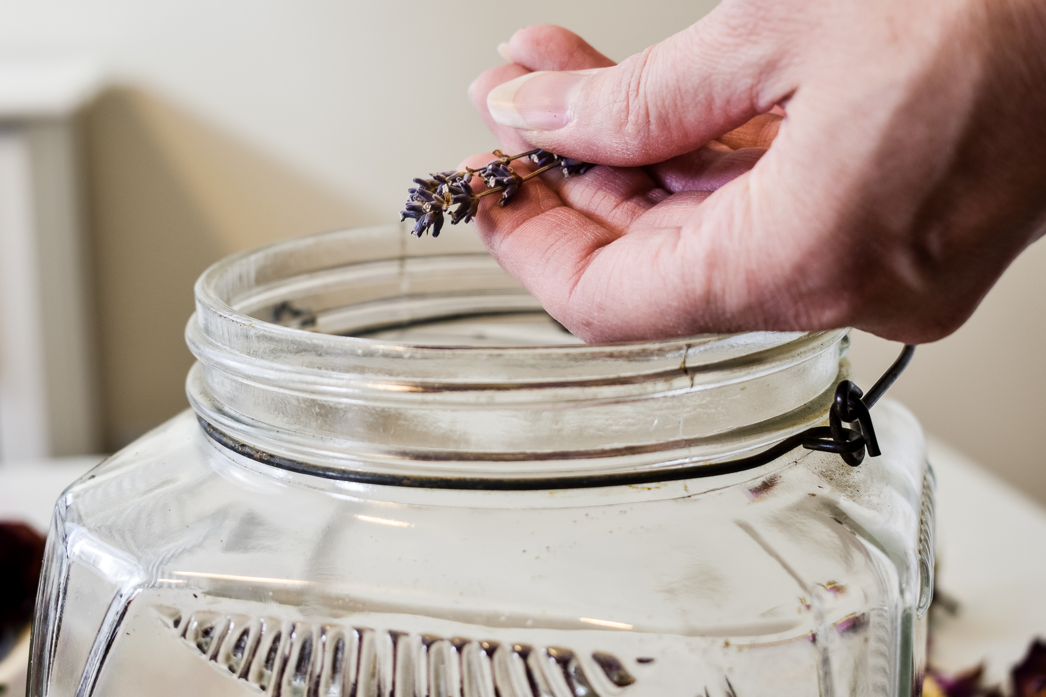 putting dried lavender into a jar