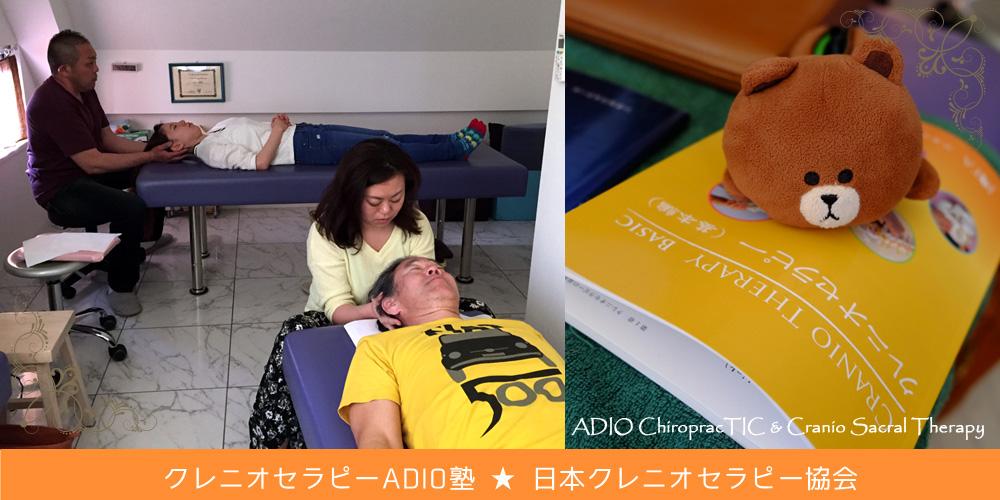 今月のクレニオセラピー塾☆入塾生もぞくぞく!