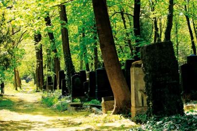 Im Himmel, Unter der Erde. Der Jüdische Friedhof Weißensee. Foto: Berlinale