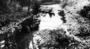 Der zur Isar fließende Conwentzbach in München, in den Oktober 1946 die Asche der in Nürnberg Hingerichteten gestreut wurde.
