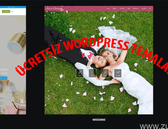 Responsive WordPress Temalar
