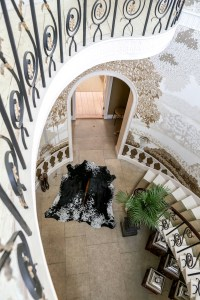 cowhide rugs, Nguni hide, skins, tricolour hides, cowhides, skins, animal print, cowhide, luxury interiors, home interiors, interior styling, soft furnishings, sustainable, ethica, soft furnishingsl