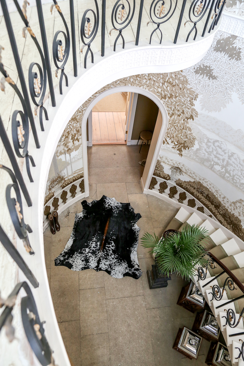 Why Zulucow's Nguni Cowhide Rugs are so Unique, So Special
