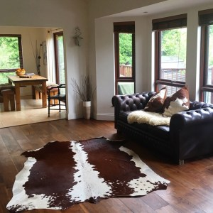 Nguni cowhide rug, cowhide cushions, ethical, sustainable