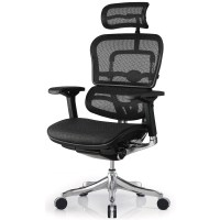 Modern Ergo Elite Mesh Swivel Chair with Headrest Black ...