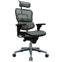 Ergo Human Mesh Swivel Chair with Headrest | Zuri Furniture
