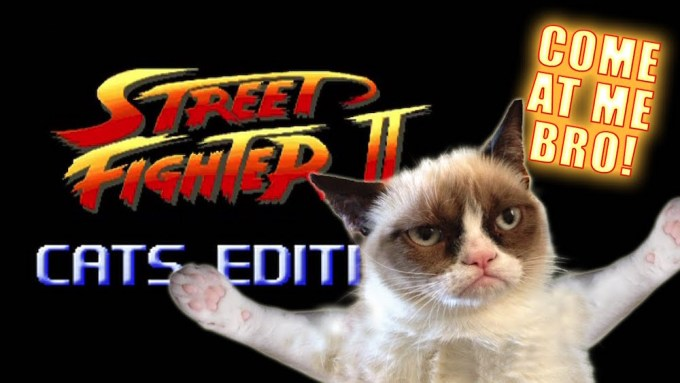street fighter II Cats edition