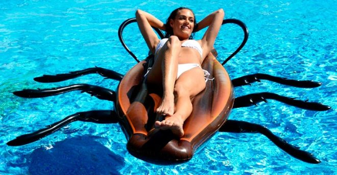 cockroach-pool-float-7