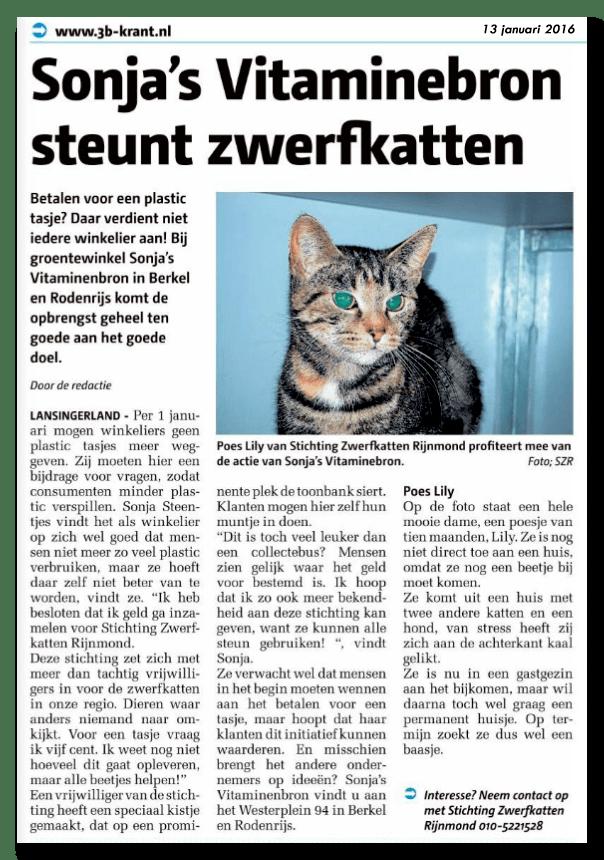 Media - 3B Krant: Sonja's Vitaminebron steunt zwerfkatten
