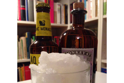 gin tonic sorbet