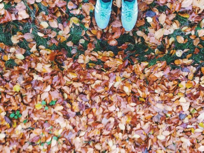 Herbst - Frische Luft zum Atmen