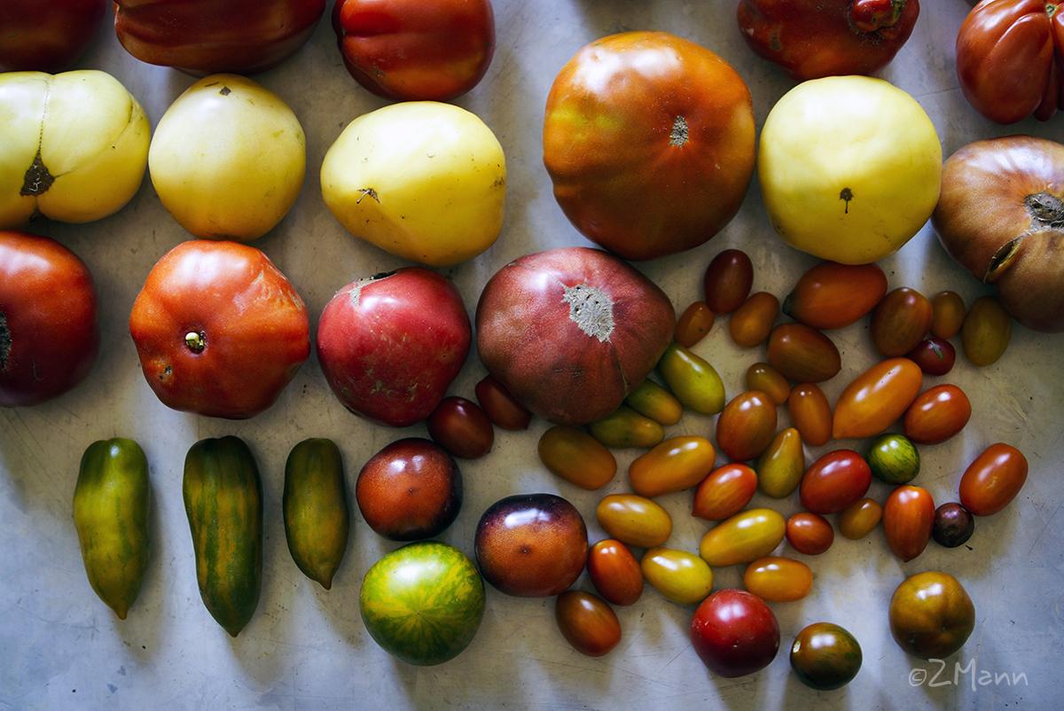 z widokiem na stol | zachwycam się pomidorami { dawnych odmian }