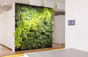 Zwinz Loft bepflanzte Wand Pflanzen begrünt › Zwinz ...