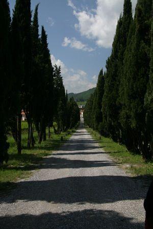 Rufina, Tuscany, Italy