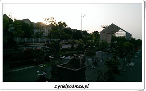 IMAG3427