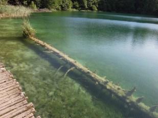 Plitwickie Jeziora konar Chorwacja