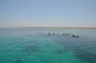 Kenia snorkeling 2