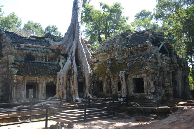 Angkor Ta Prohm Kambodża