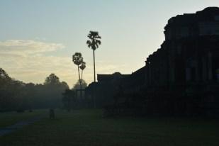 Angkor Wat rano Kambodża