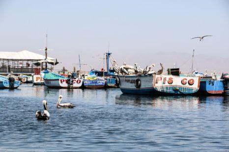 Port Paracas Peru