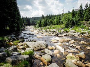 Rzeka Izera 2