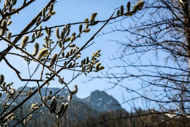 Tatry wiosną