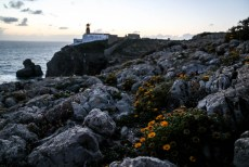 Algarve Przylądek Cabo de Sao Vicente 2