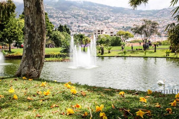 Madera Funchal park