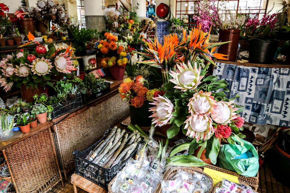 Madera targ Mercado dos Lavradores 2