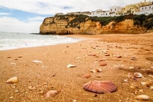 Portugalia Algarve Praia de Carvoeiro