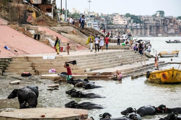 Indie Waranasi życie nad Gangesem