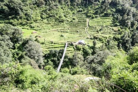Nepal trekking do ABC most za Chhomrong