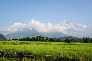 Nepal trekking do ABC ośnieżone szczyty