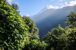 Nepal trekking do ABC powrót widoki za plecami