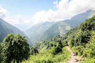 Nepal trekking do ABC za Chhomrong