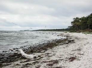 Bornholm plaża