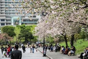 Pałac Cesarski Tokio ogrody
