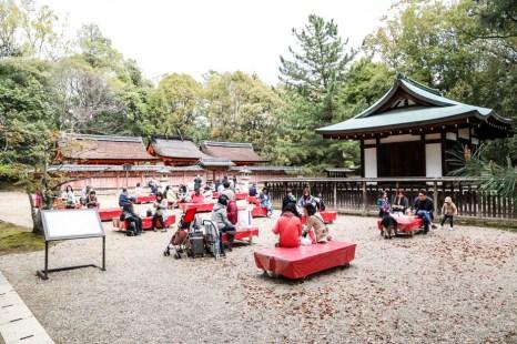 Świątynia Ninna-ji herbaciarnia