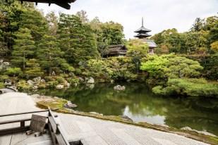 Świątynia Ninna-ji ogród