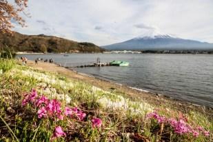 Wulkan Fuji i jezioro