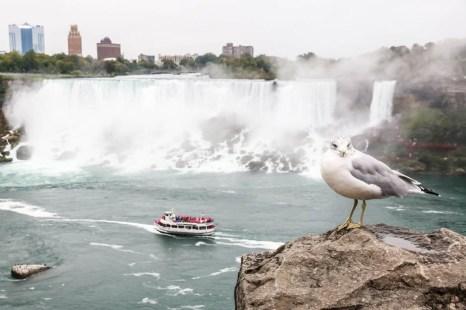 American Falls i Bridal Veil Falls od strony kanadyjskiej
