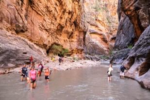 http://www.zyczpasja.pl/wp-content/uploads/2018/12/Zion-trekking-Narrows.jpg