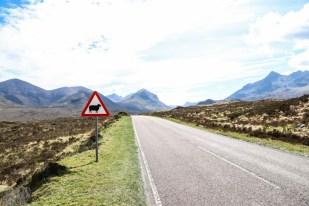 Droga wyspa Skye