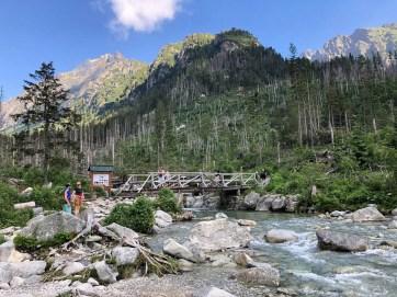 Potok w dolinie