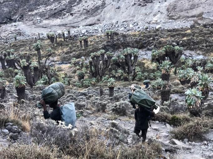 Tanzania trekking Kilimananjaro tragarze