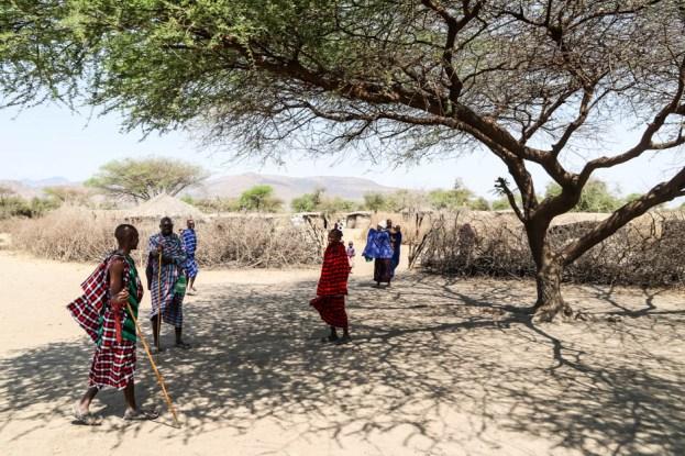 Tanzania wioska Masajow